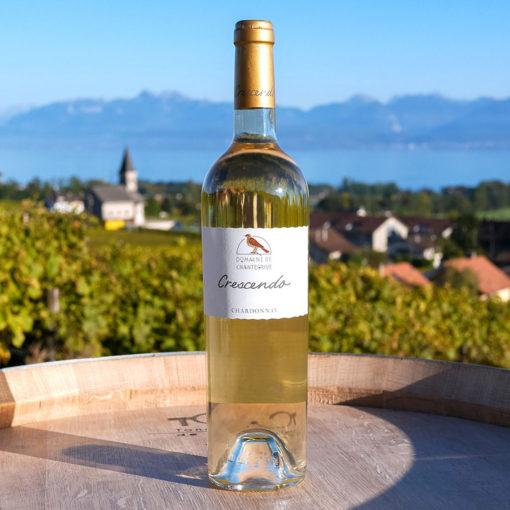Chardonnay 75cl Gamme Crescendo Domaine de Chantegrive