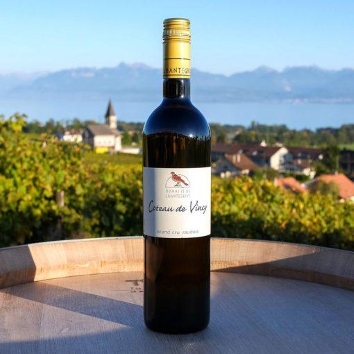 Chasselas Coteau de Vincy Domaine de Chantegrive