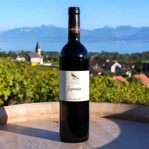 Soprano Pinot noir 75cl Domaine de Chantegrive