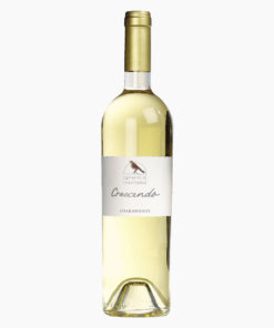 Vin Chardonnay 75cl Gamme Crescendo Domaine de Chantegrive