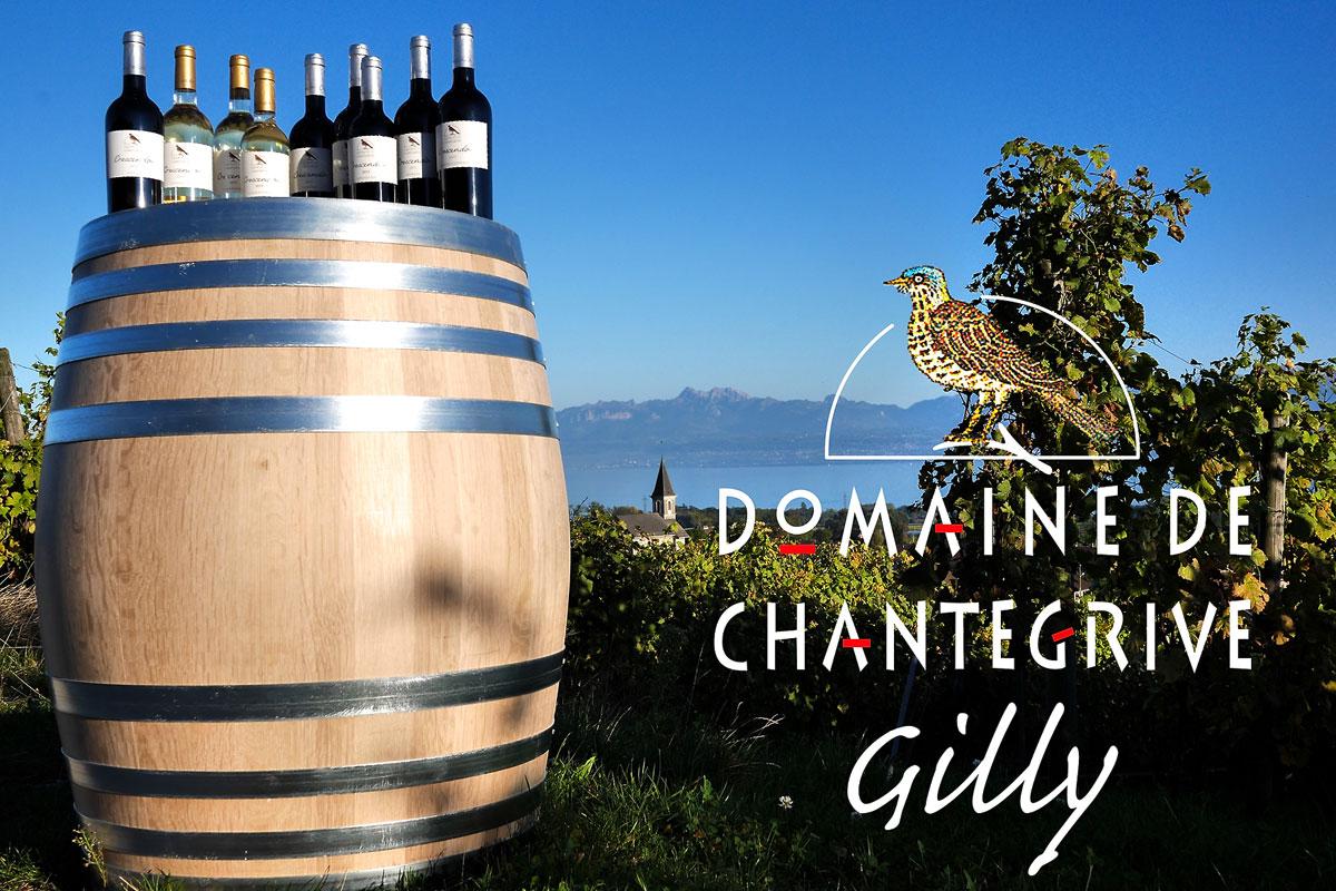 Dégustation de vins au Domaine de Chantegrive