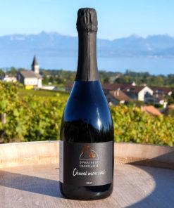 Capriccioso Vin mousseux Alain Rolaz