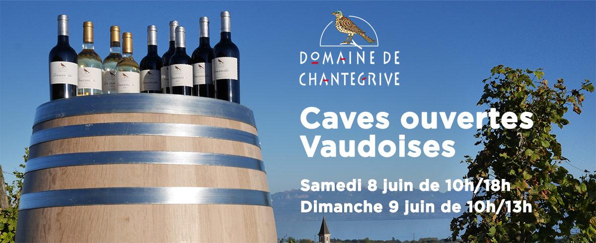 Caves ouvertes vaudoises 2019 Domaine de Chantegrive